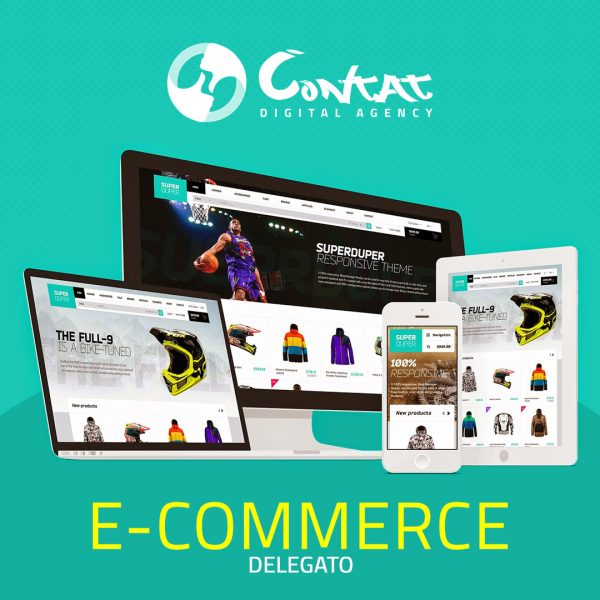 E-commerce delegata 1