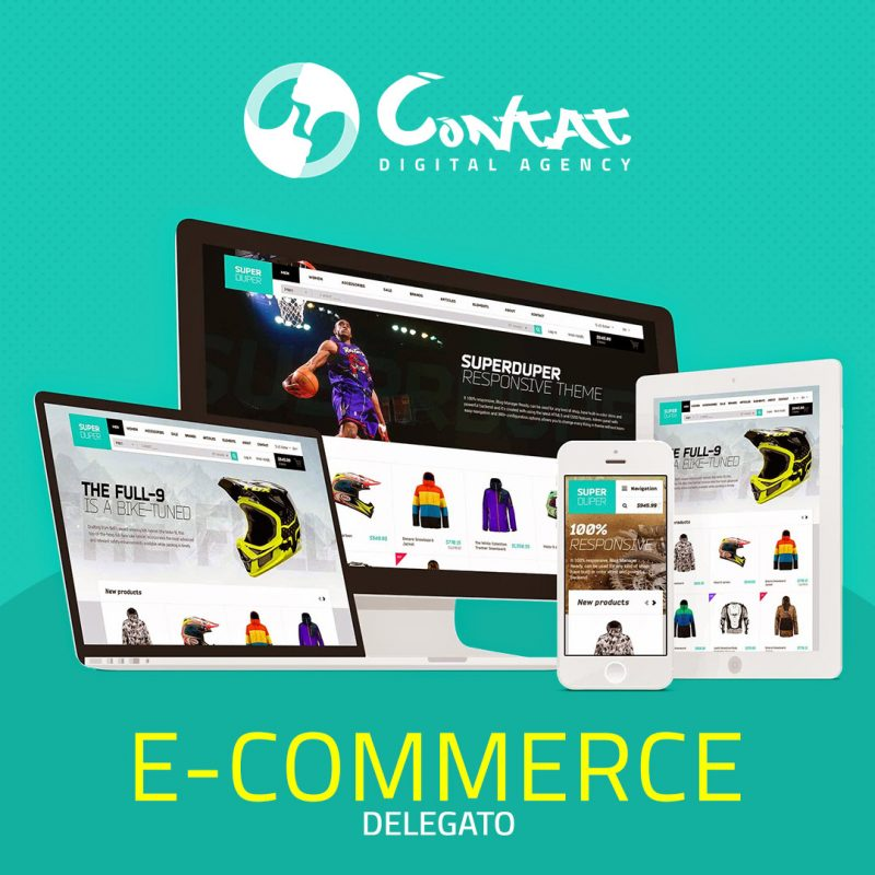 E-commerce delegata 6